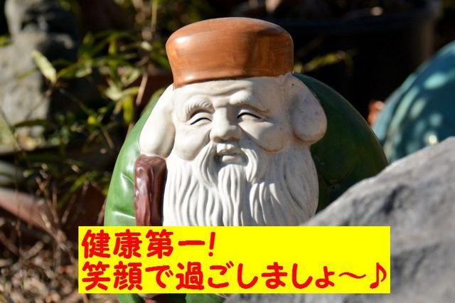 JPG_3502.jpg