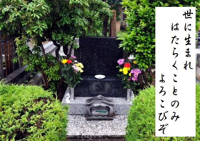 s-JPG_3506.jpg